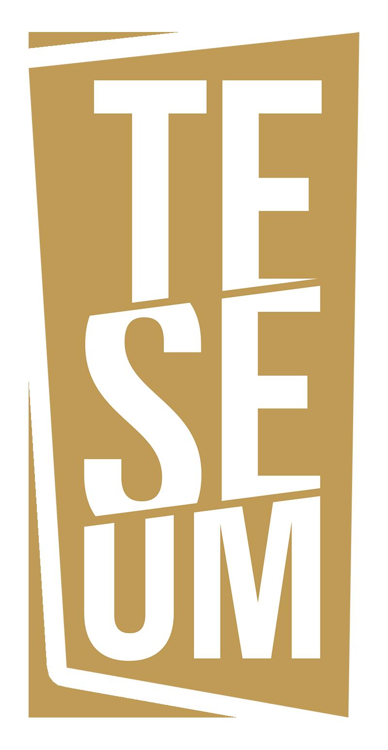 Logo Teseum